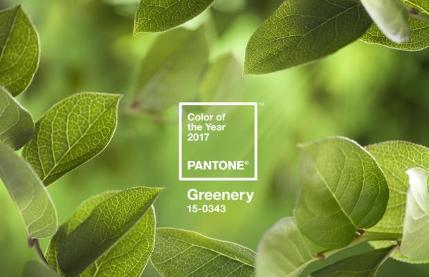 pantone_coy_2017_heroshot2-rgb-tif